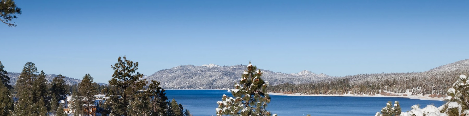 best bay rentals pet california bear cabins big s summit mountain friendly snow lake boulder house